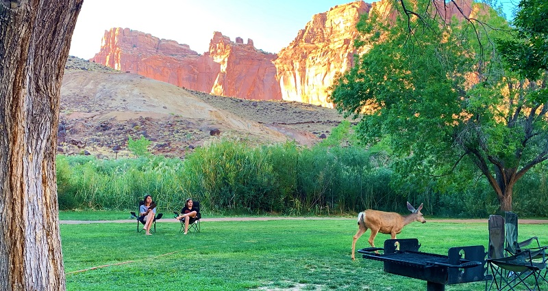 USA Roadtrip Tag 15: Fruita Campground (Capitol Reef National Park)
